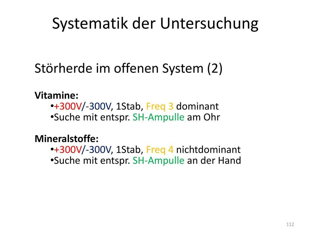 Systematik der Untersuchung
