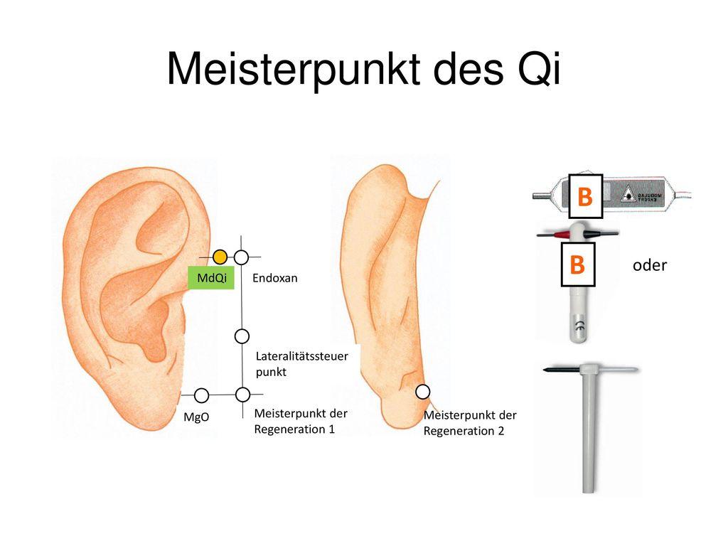 Meisterpunkt des Qi B oder Meisterpunkt der Regeneration 1 MgO
