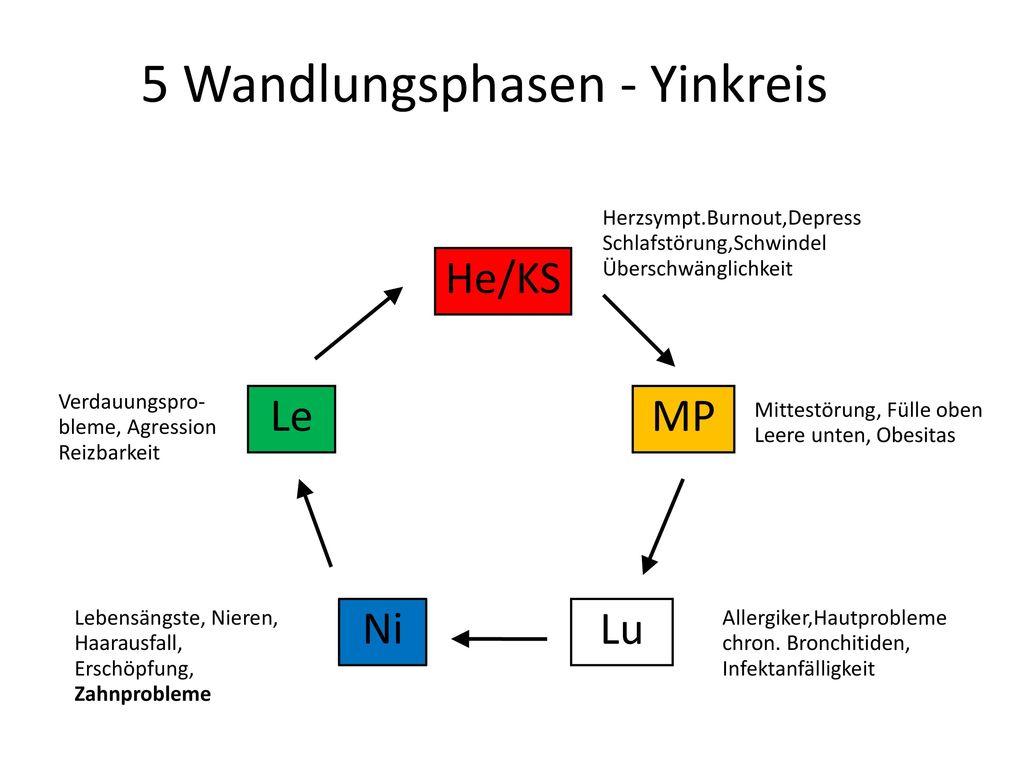 5 Wandlungsphasen - Yinkreis