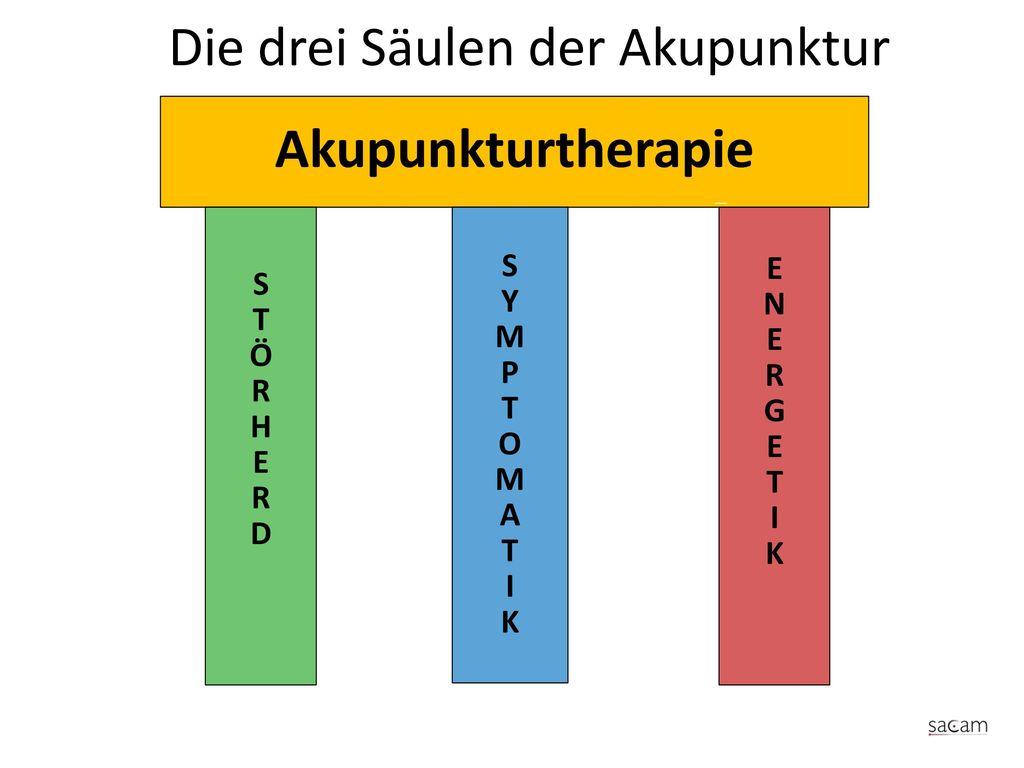 Die drei Säulen der Akupunktur