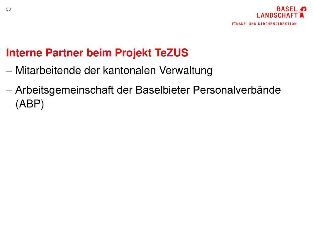 Interne Partner beim Projekt TeZUS