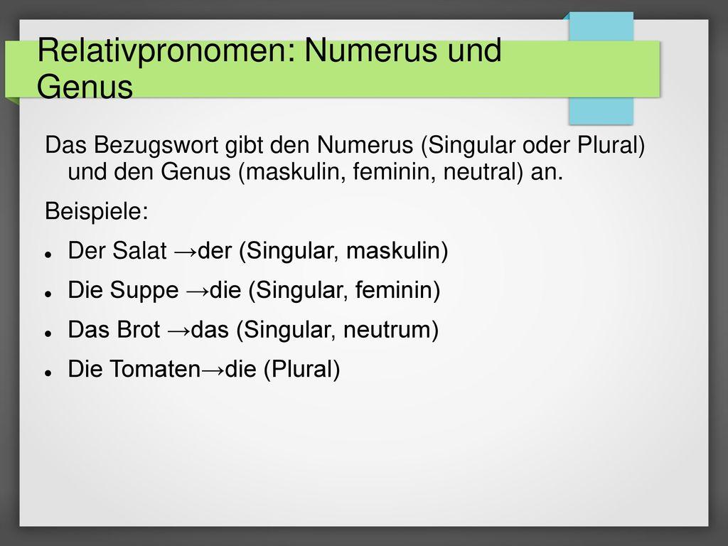 Relativpronomen: Numerus und Genus