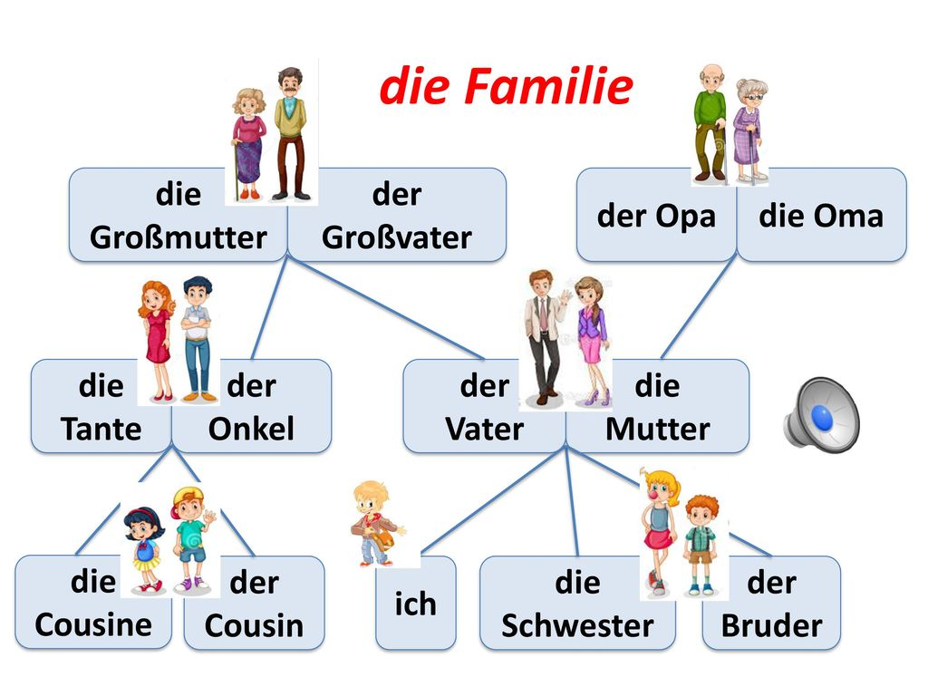 die Familie die Großmutter der Großvater der Opa die Oma die Tante