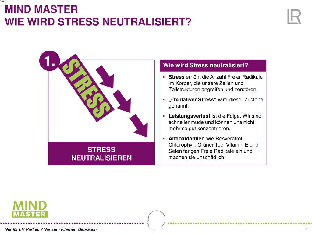 MIND MASTER WIE WIRD STRESS NEUTRALISIERT
