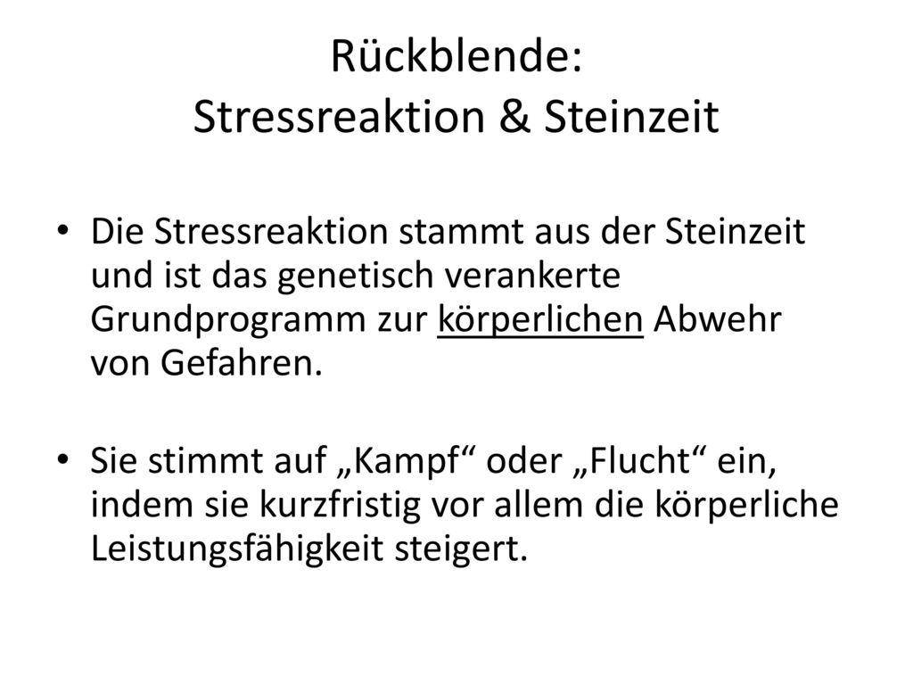Rückblende: Stressreaktion & Steinzeit