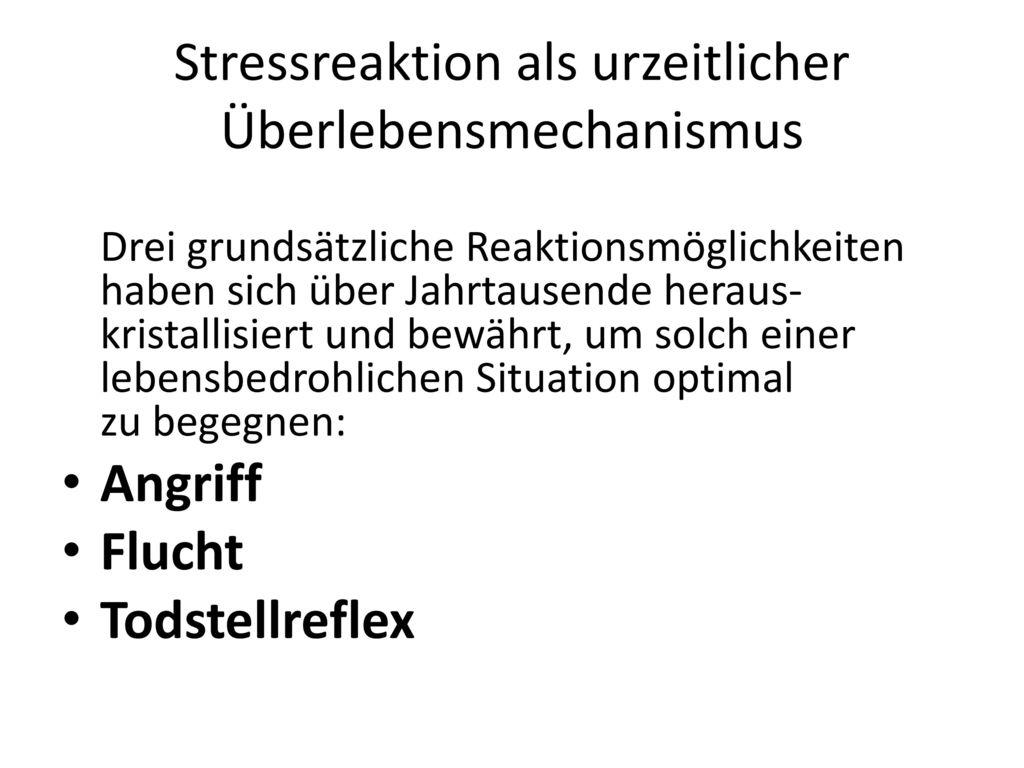Stressreaktion als urzeitlicher Überlebensmechanismus
