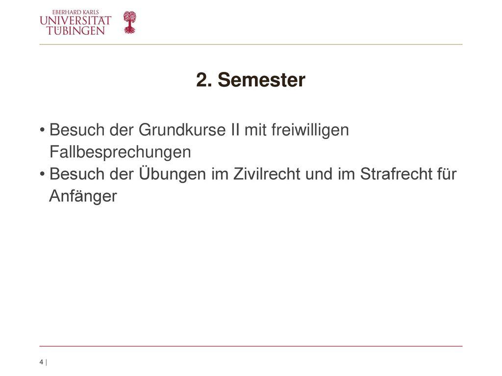 2. Semester Besuch der Grundkurse II mit freiwilligen Fallbesprechungen.