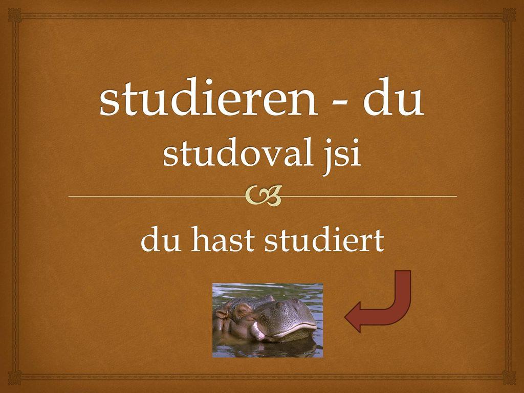 studieren - du studoval jsi