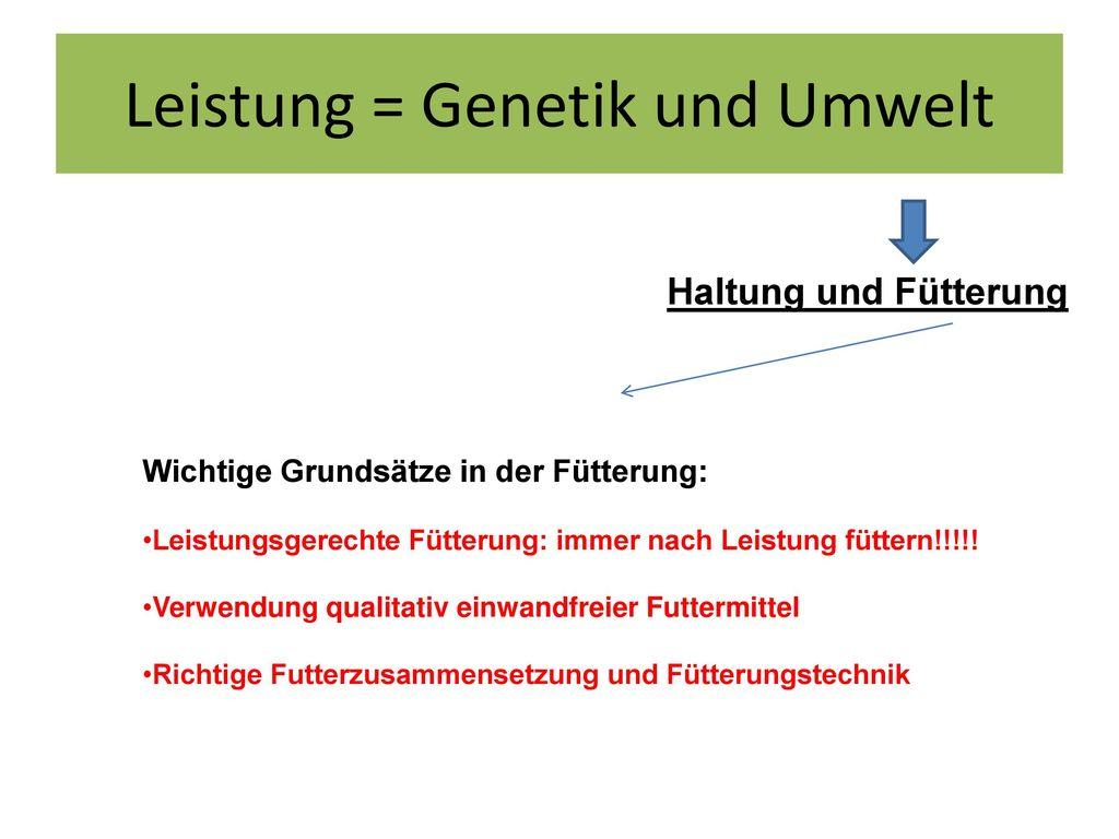 Leistung = Genetik und Umwelt