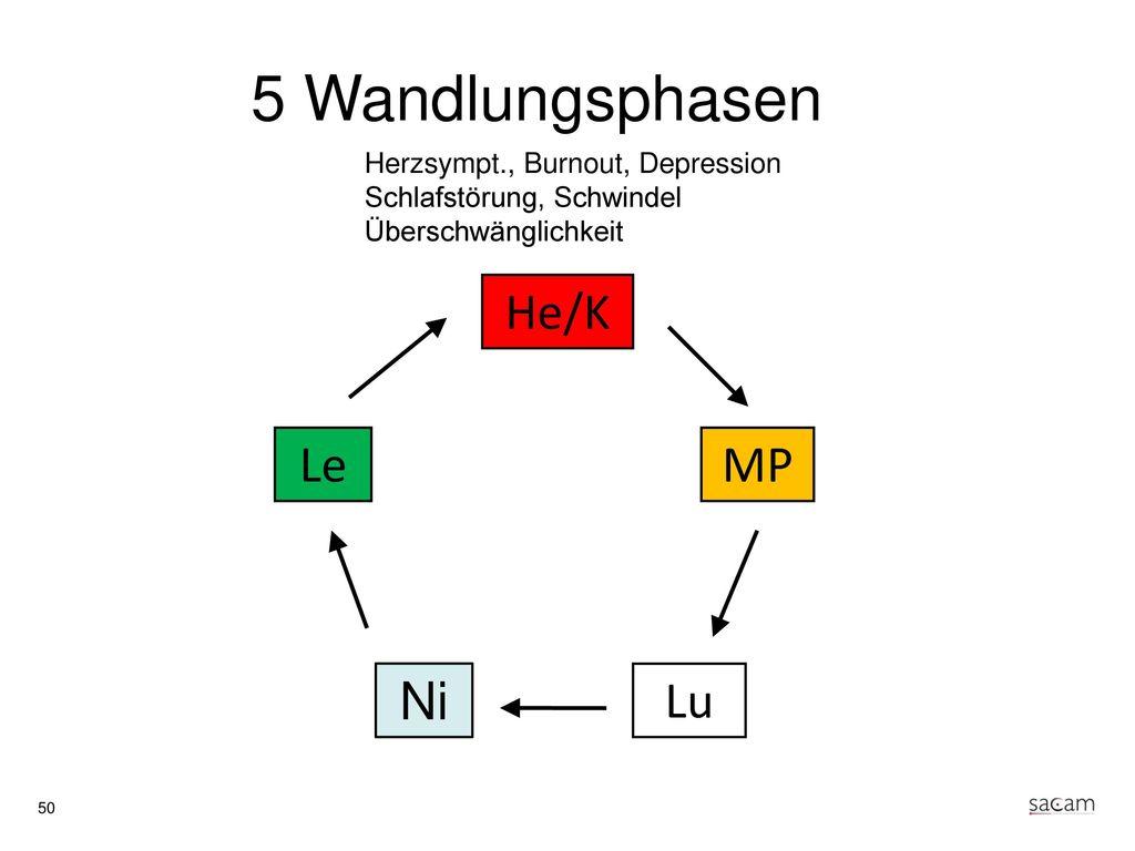 Herz (Yin) Yang-Organ: Dünndarm Sinnesorgan: Zunge Gewebe: Gefässe