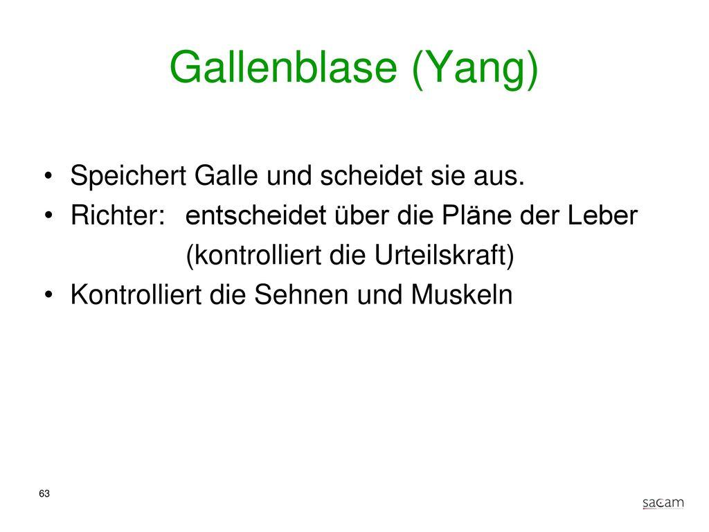 """Blasen - Meridian Bilder aus """"Hempen: Taschenatlas Akupunktur und """"Bahr: Das grosse Buch der klassischen Akupunktur"""