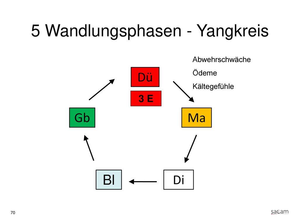 3 Erwärmer (Yang) Beamte für die Bewässerung
