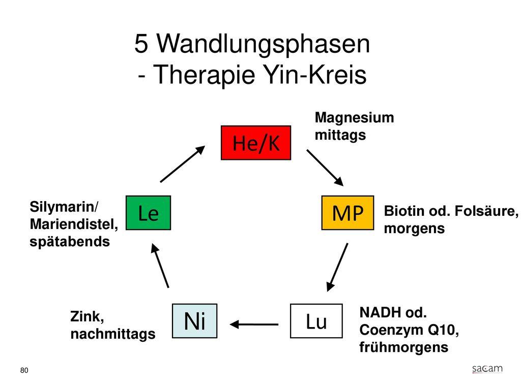 Therapie Korrespondierende Akupunkturpunkte am Ohr