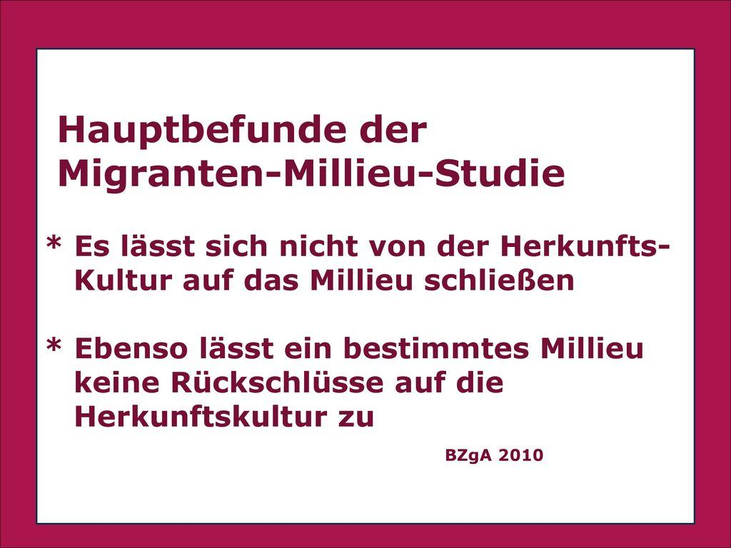 Migranten-Millieu-Studie