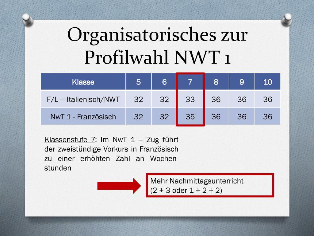 Organisatorisches zur Profilwahl NWT 1