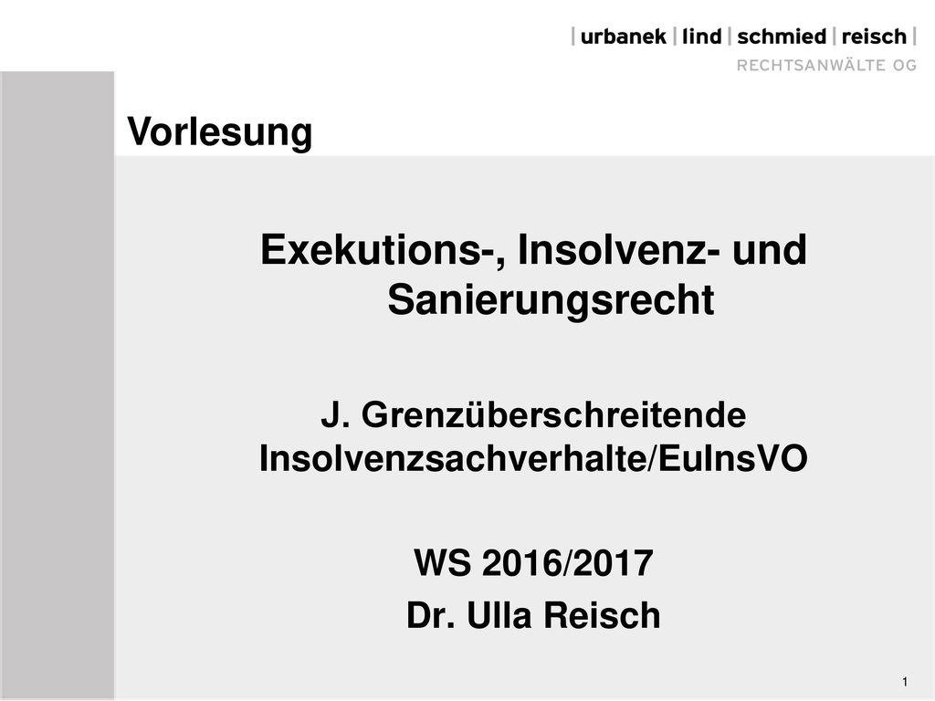 Exekutions-, Insolvenz- und Sanierungsrecht