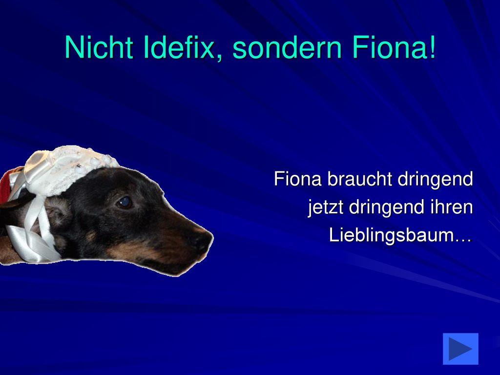 Nicht Idefix, sondern Fiona!