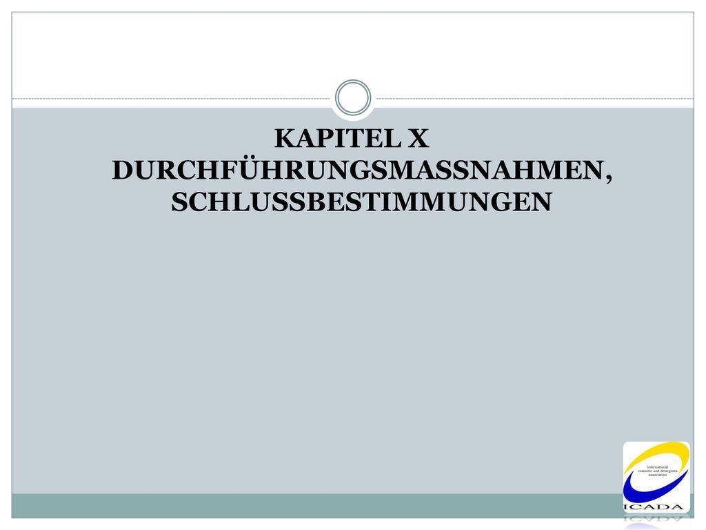 KAPITEL X DURCHFÜHRUNGSMASSNAHMEN, SCHLUSSBESTIMMUNGEN