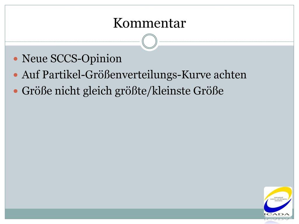Kommentar Neue SCCS-Opinion