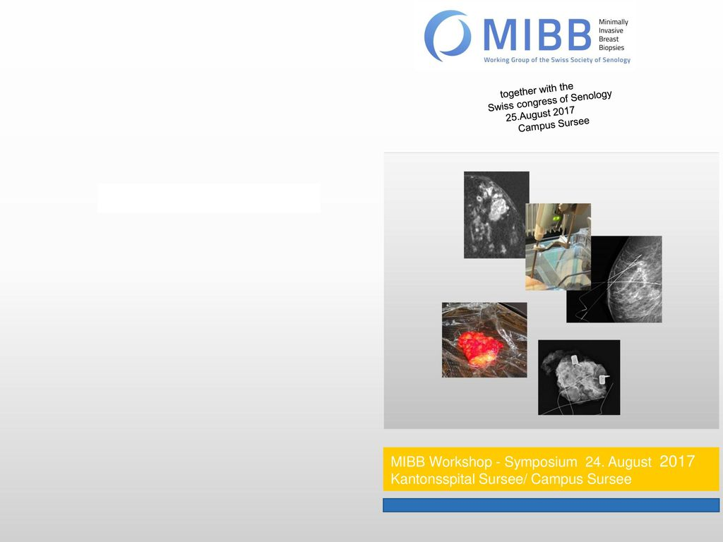 MIBB Workshop - Symposium 24. August 2017