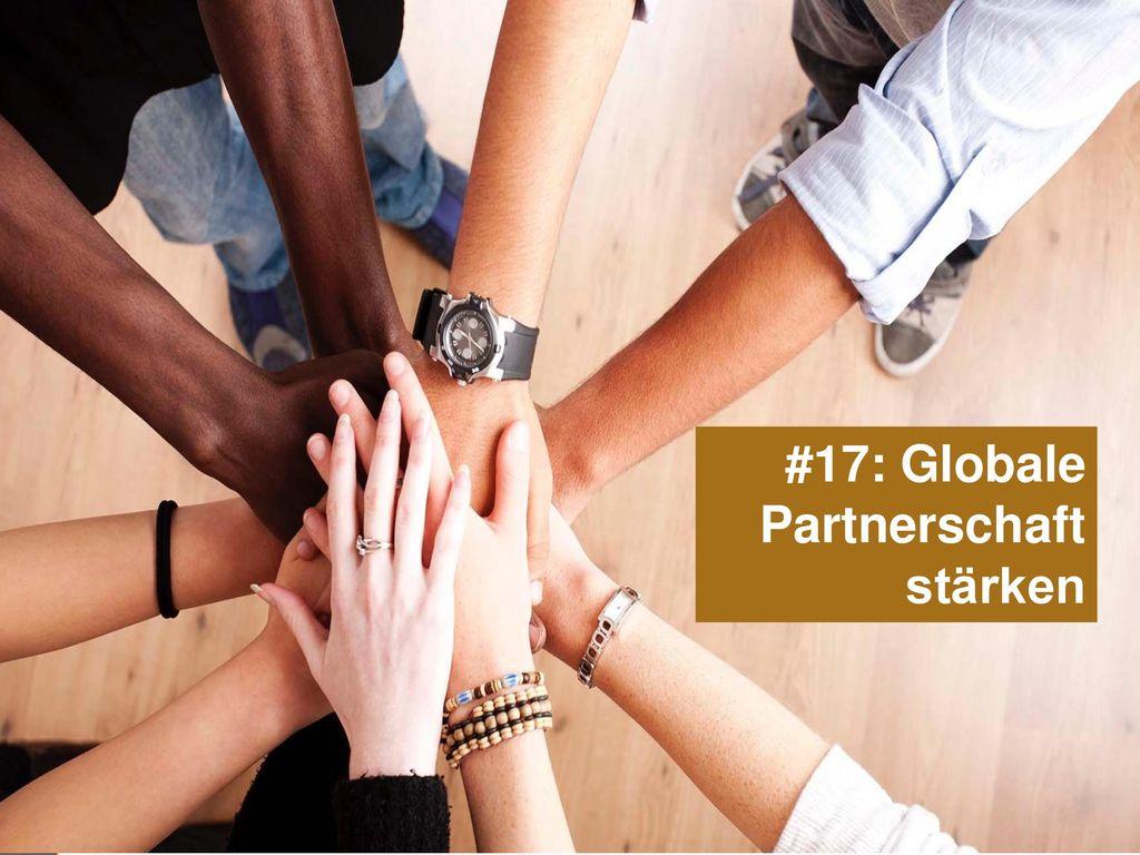 #17: Globale Partnerschaft stärken