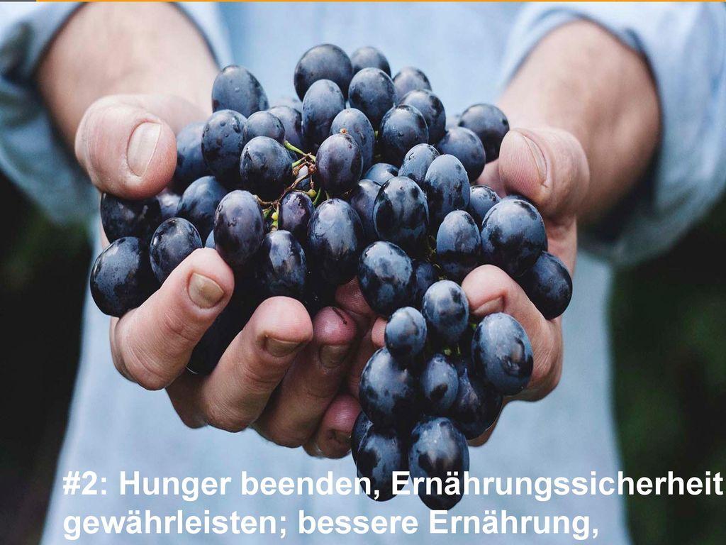 #2: Hunger beenden, Ernährungssicherheit gewährleisten; bessere Ernährung, nachhaltige Landwirtschaft