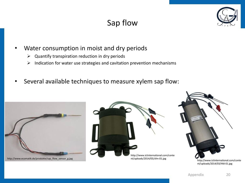 Sap flow Water consumption in moist and dry periods