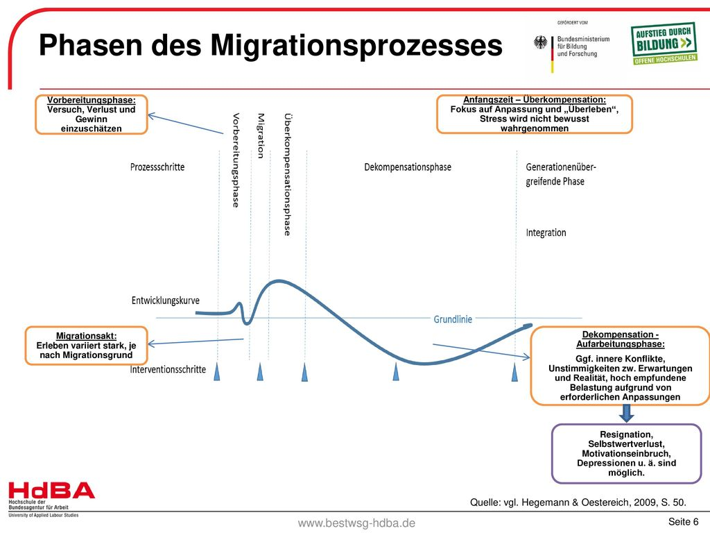 Phasen des Migrationsprozesses