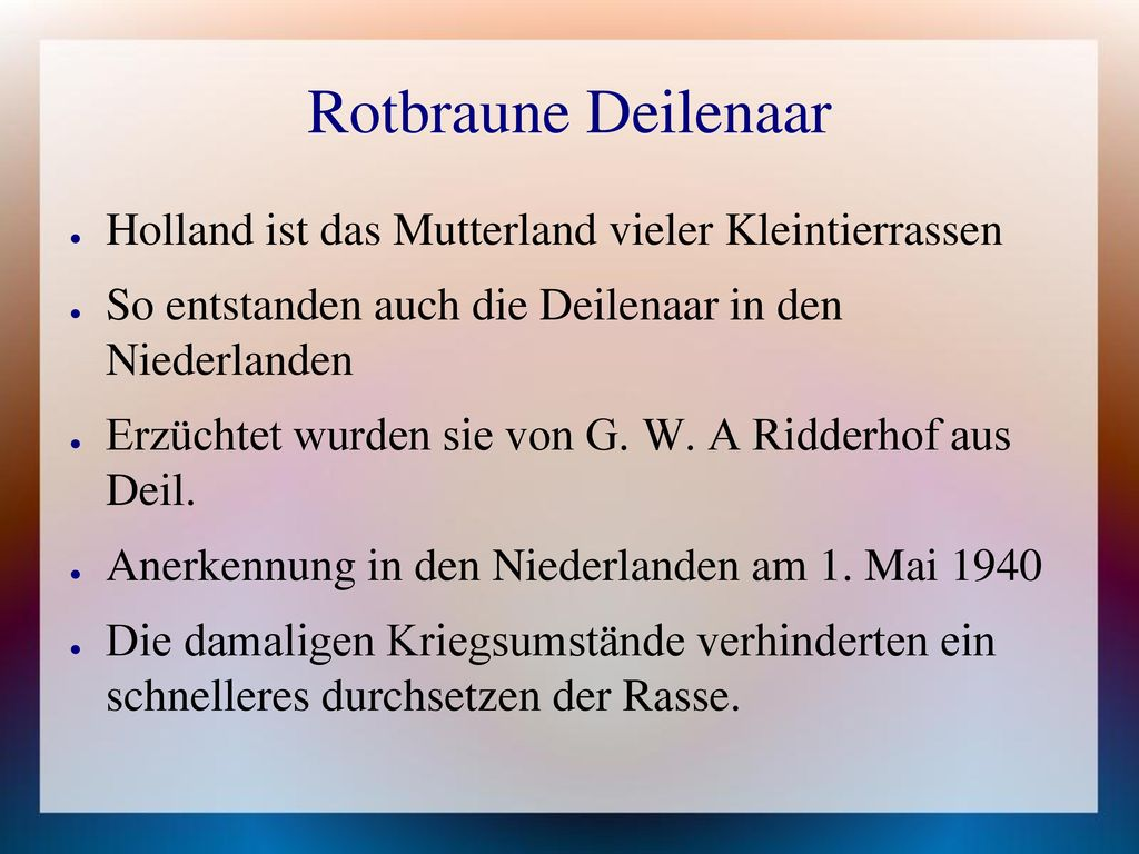 Rotbraune Deilenaar Holland ist das Mutterland vieler Kleintierrassen
