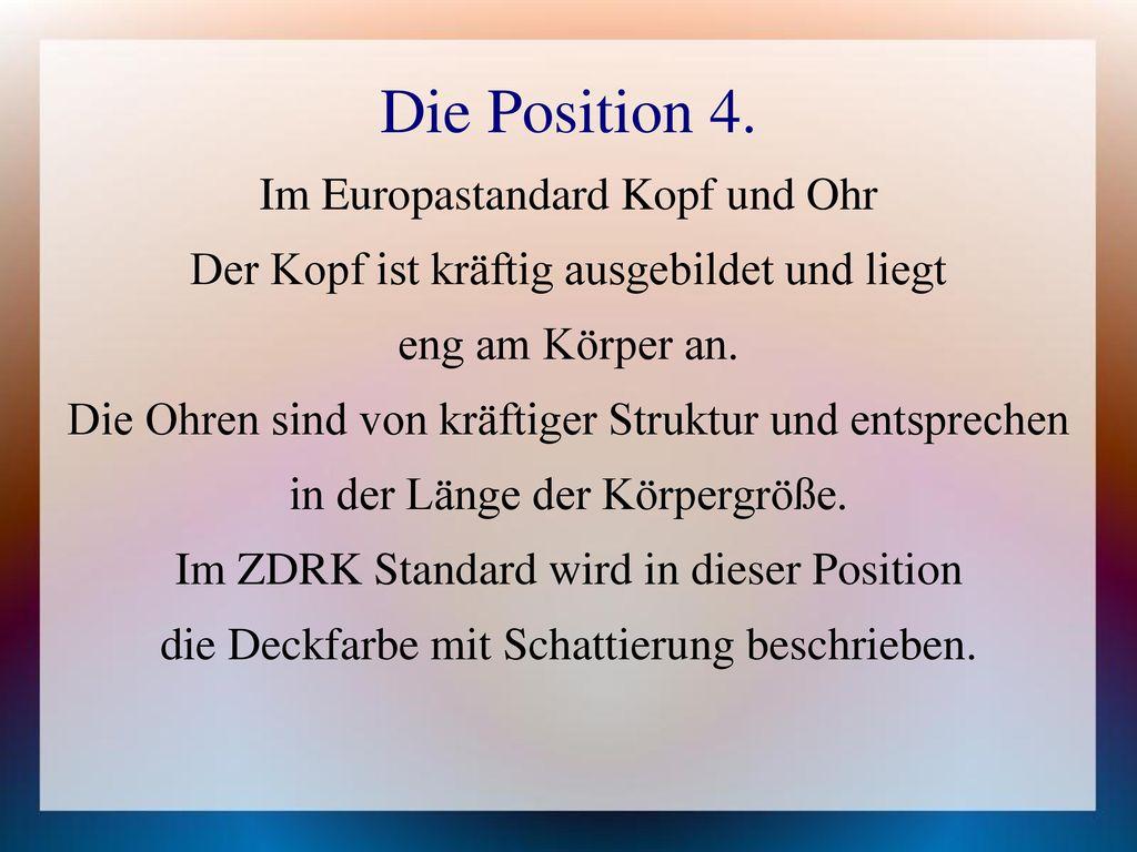 Die Position 4. Im Europastandard Kopf und Ohr