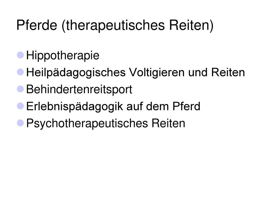 Pferde (therapeutisches Reiten)