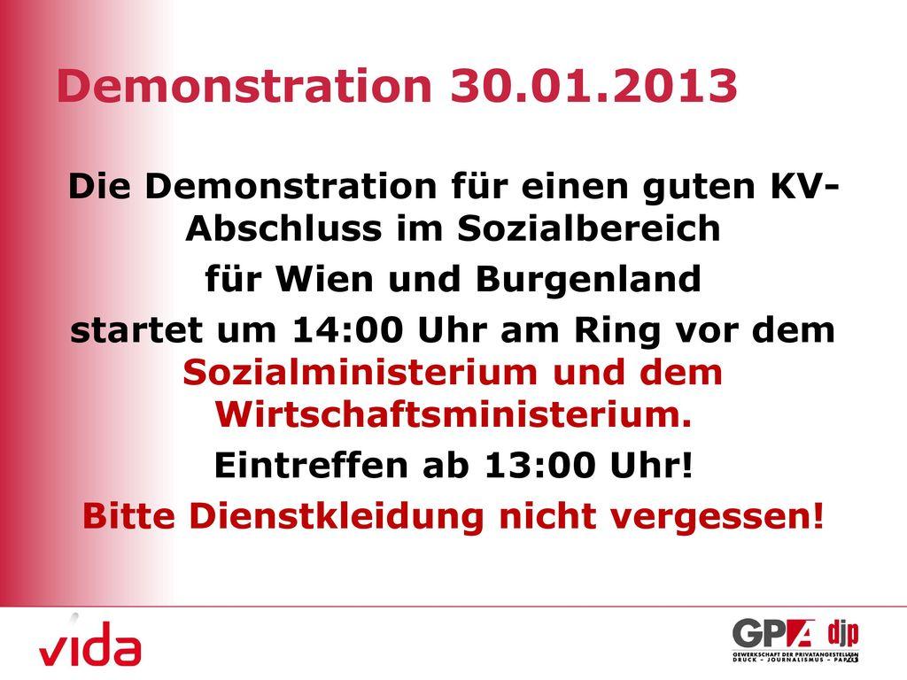 Demonstration 30.01.2013