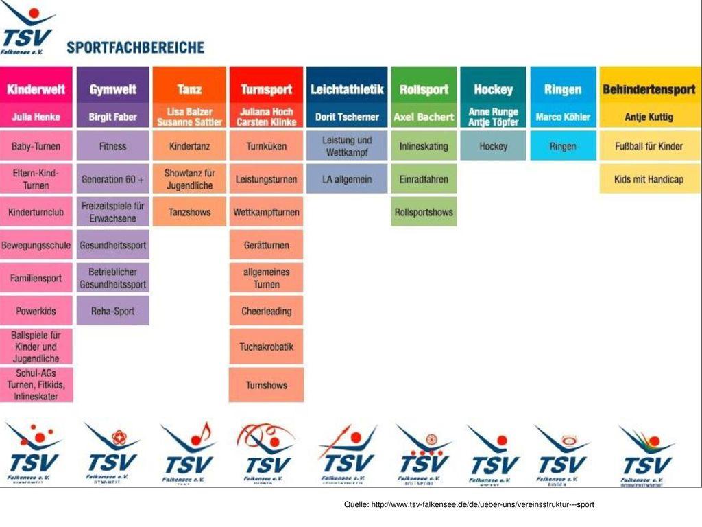 Prozesspolitik - Organisationsstruktur