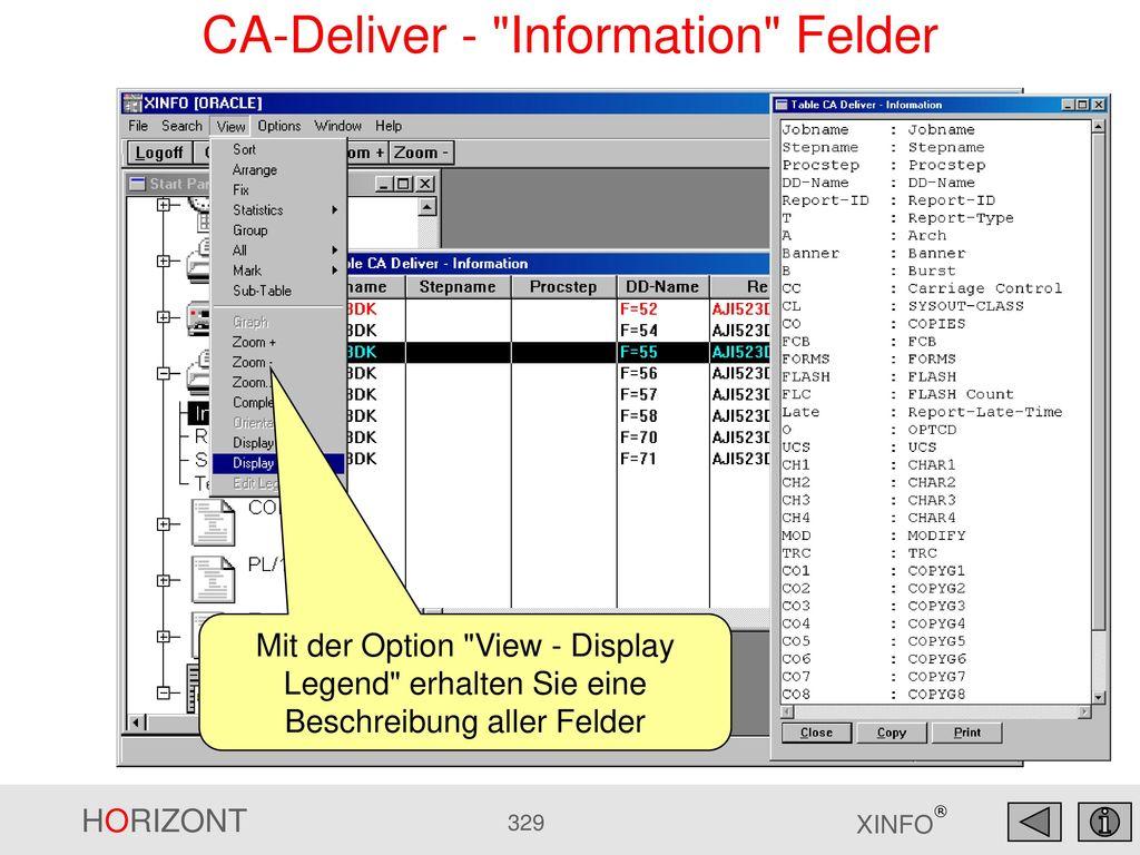 CA-Deliver - Information Felder