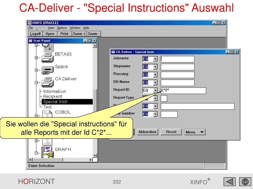 CA-Deliver - Special Instructions Auswahl