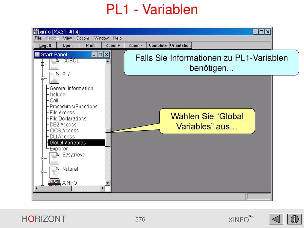 PL1 - Variablen Falls Sie Informationen zu PL1-Variablen benötigen...