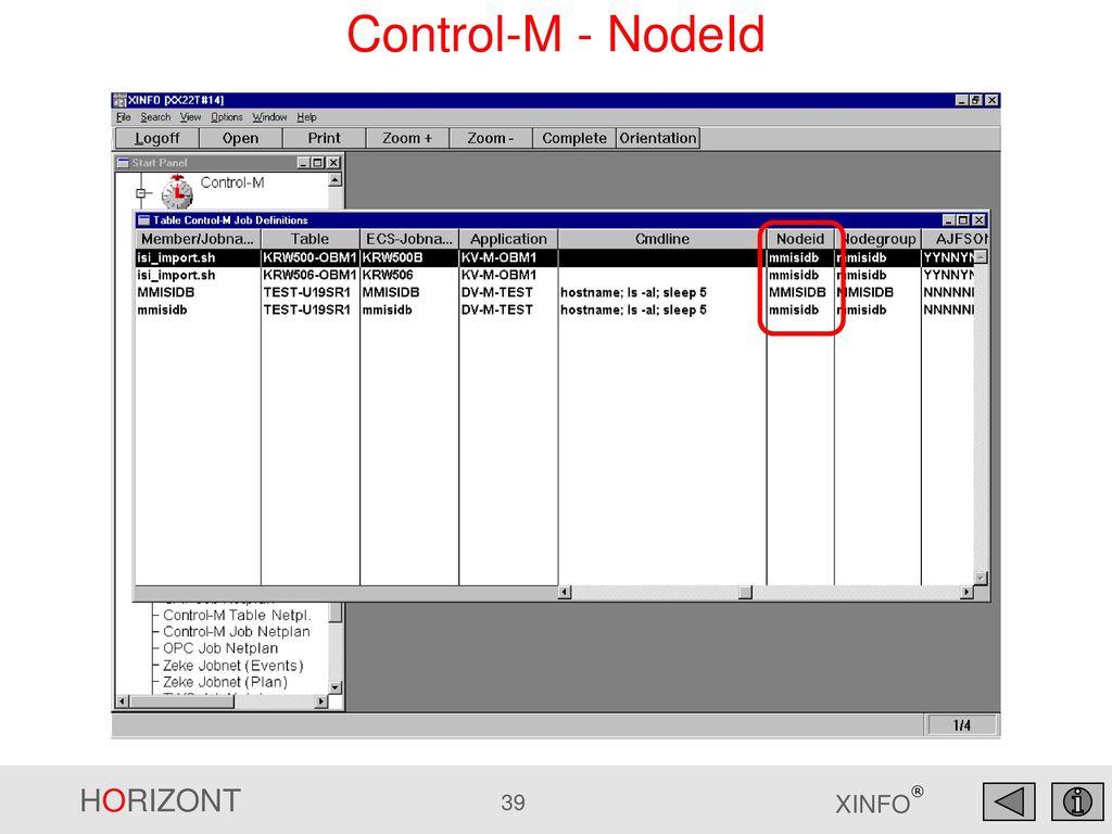 Control-M - NodeId