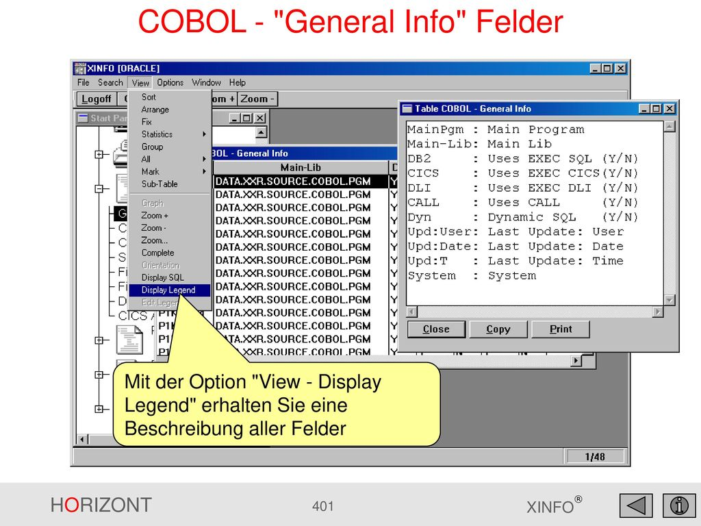 COBOL - General Info Felder