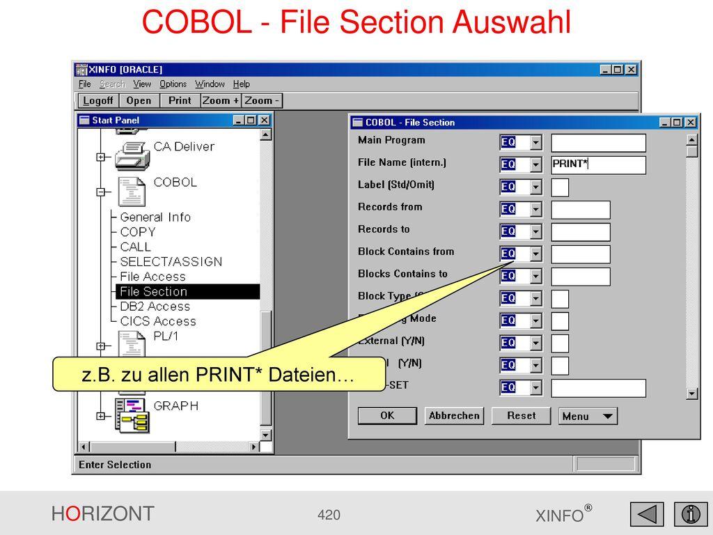 COBOL - File Section Auswahl