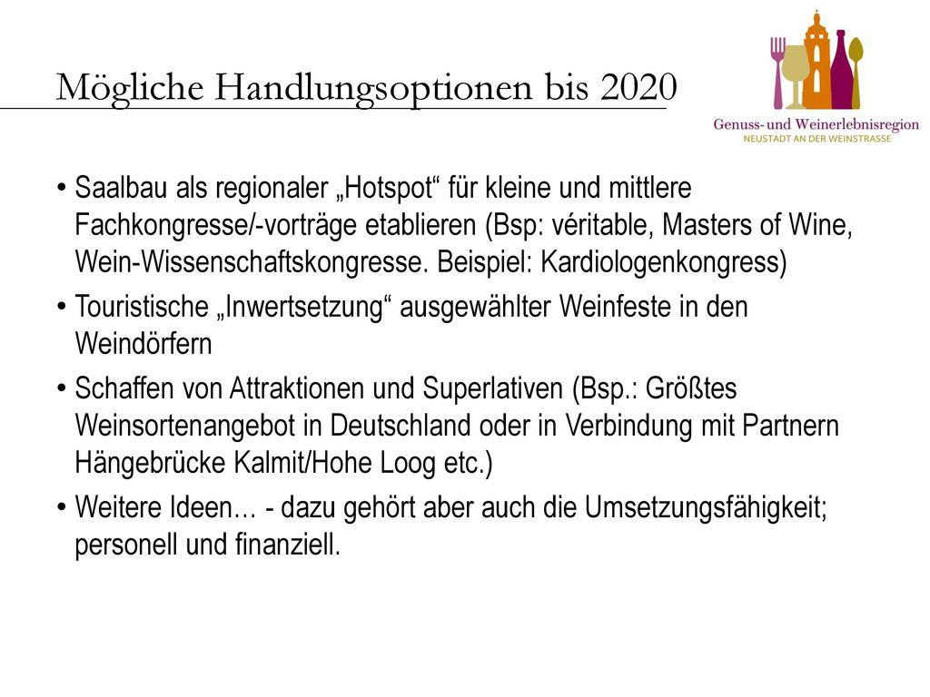 Mögliche Handlungsoptionen bis 2020
