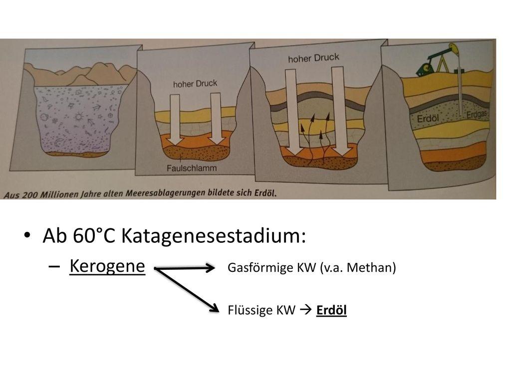 Ab 60°C Katagenesestadium: