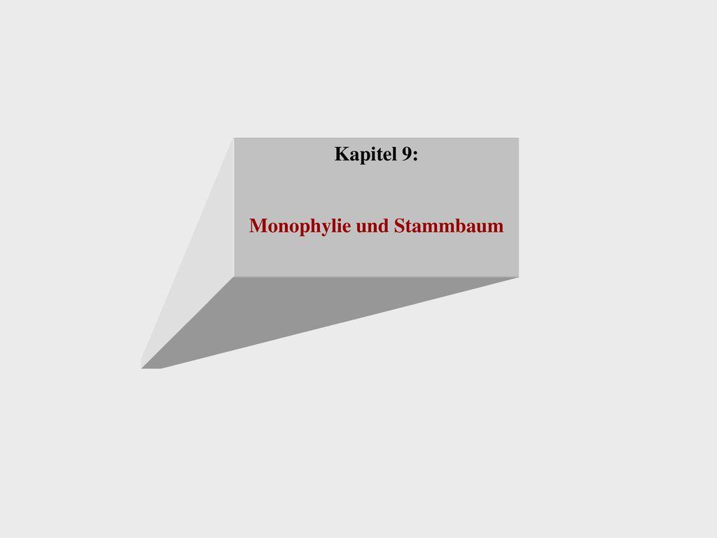 Monophylie und Stammbaum