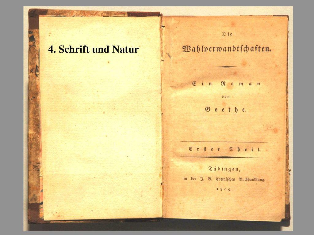 4. Schrift und Natur