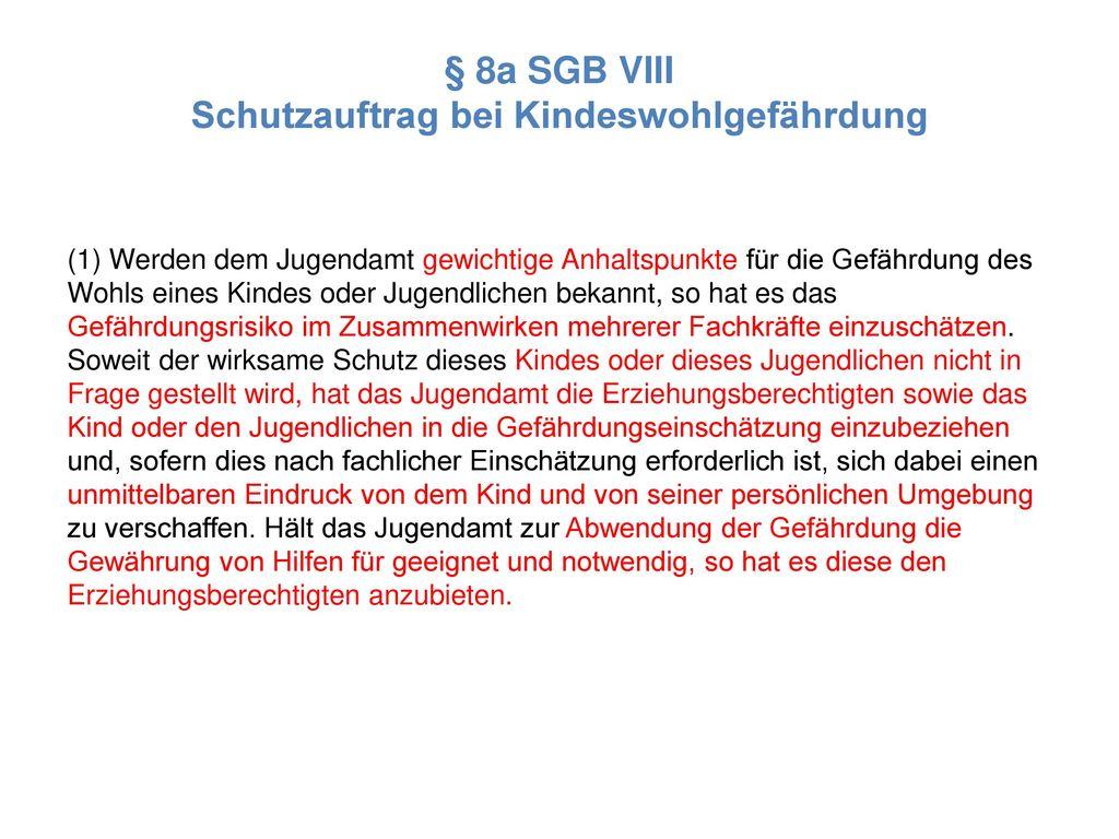 § 8a SGB VIII Schutzauftrag bei Kindeswohlgefährdung