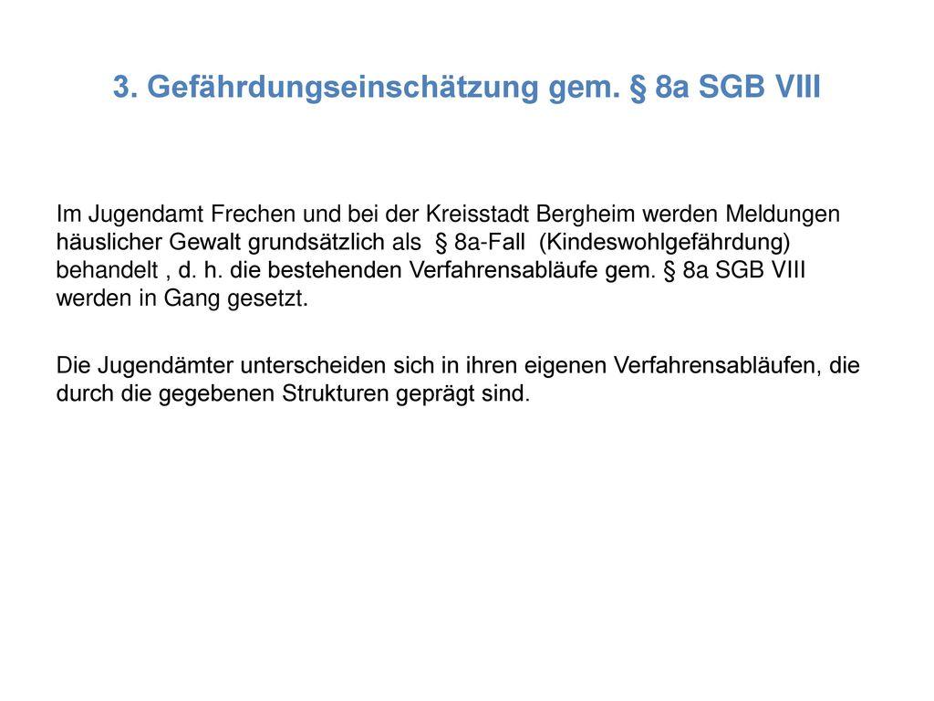 3. Gefährdungseinschätzung gem. § 8a SGB VIII
