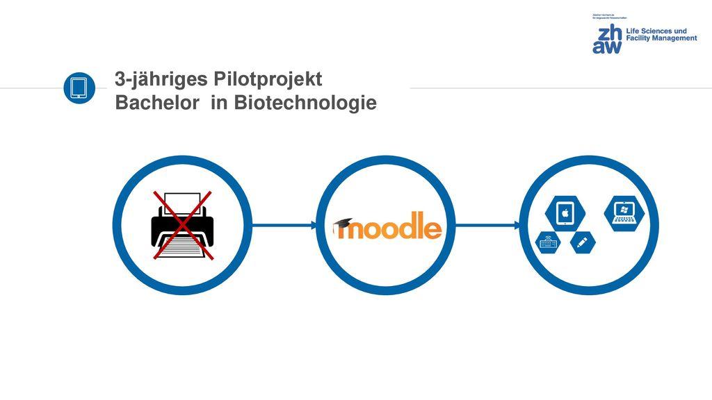 3-jähriges Pilotprojekt Bachelor in Biotechnologie
