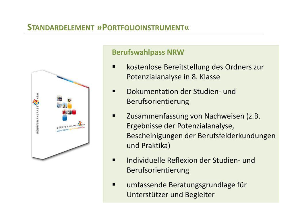 Standardelement »Portfolioinstrument«
