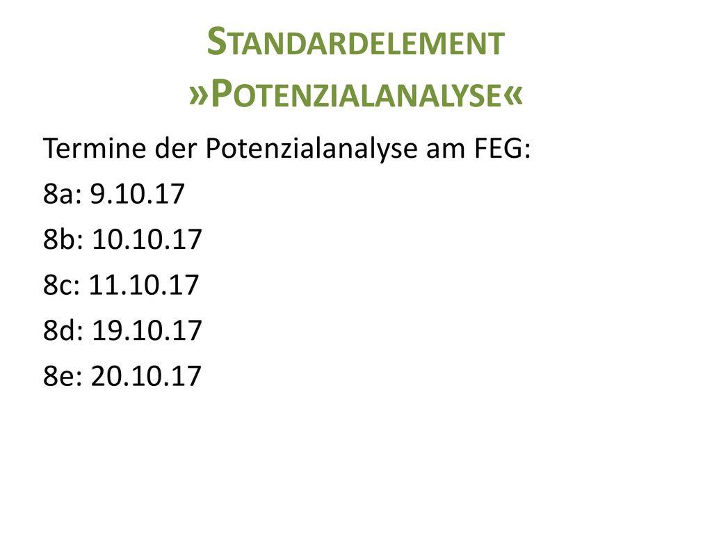 Standardelement »Potenzialanalyse«