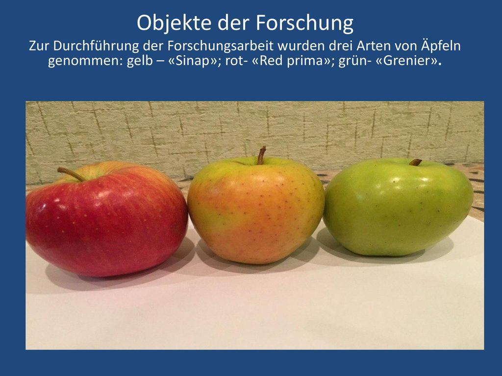 Objekte der Forschung Zur Durchführung der Forschungsarbeit wurden drei Arten von Äpfeln genommen: gelb – «Sinap»; rot- «Red prima»; grün- «Grenier».
