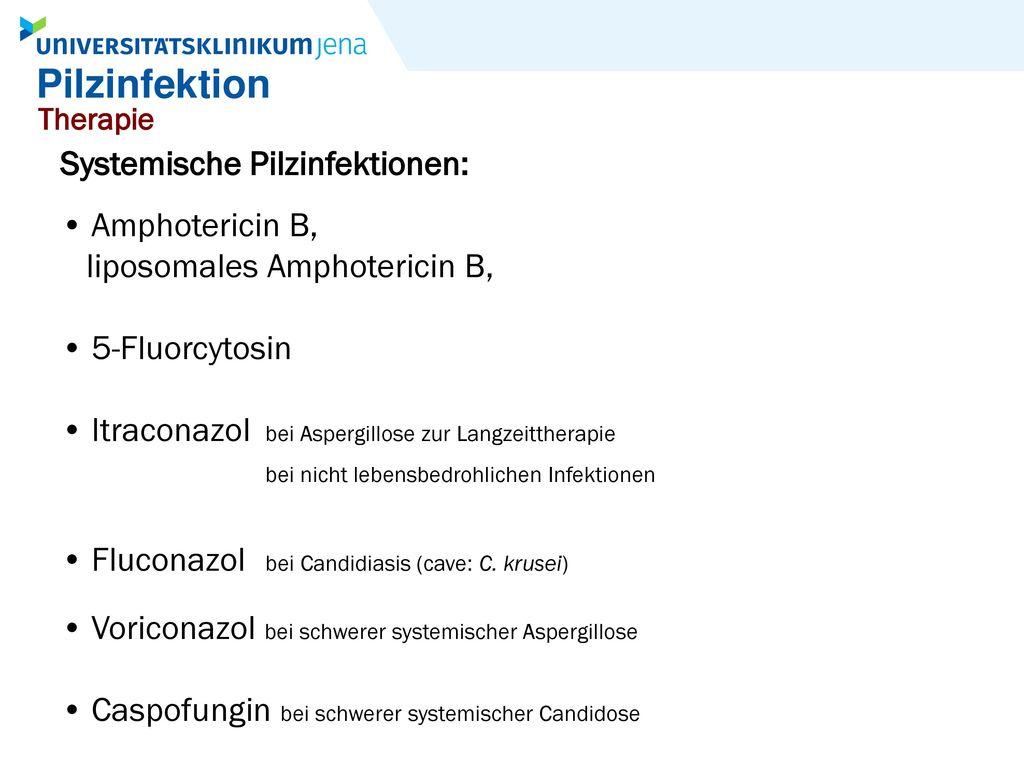 Pilzinfektion Systemische Pilzinfektionen: